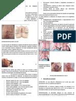 Patolog_a_Vulvar_REVISADA