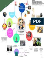 MAPA MENTAL- CATACLISMO DE DAMOCLES