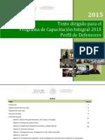 02-Texto-dirigido-Perfil-DEFENSORES.pdf