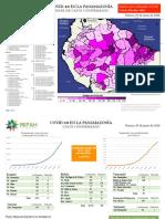 Covid-19 en los pueblos indígenas amazónicos (05/06/2020)