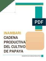 TRABAJO PRESENTACION DE DIAGNOSTIO DE Papaya.docx