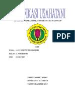 ANALISIS USAHATANI KACANG PANJANG DI LNGSAR.docx