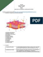 atv _3 ano zona _membrana _20.04