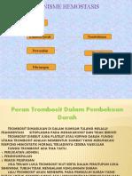 Mekanisme Hemostasis PP.pptx