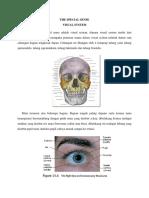 VISUAL SYSTEM FIX.pdf