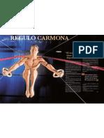 RÉGULO CARMONA SE DESNUDA (3)