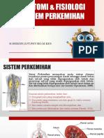 ANATOMI & FISIOLOGI SISTEM PERKEMIHAN-1