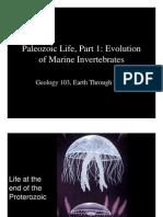 Paleozoic life, evolution of marine invertebrates