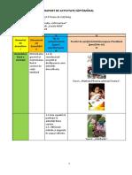 Raport de Activitate Saptamanal