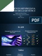 La herencia Mendeliana, Orígenes de la Genética