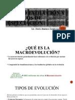 MACROEVOLUCION Y MODELOS DE ESPECIACION