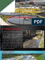 CARACTERISTICAS QUIMICAS DE COMPUESTOS ORGANICOS