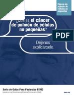 ES-Cancer-de-Pulmon-de-Celulas-no-Pequenas-Guia-para-Pacientes.pdf