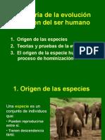 2. La teoría de la evolución y el   origen del ser humano