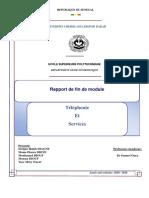 Rapport Téléphonie et Services