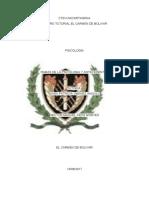 trabajo protocolo psicologia.docx
