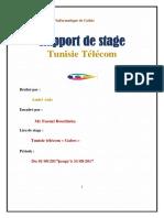anis-amiri-stage (1).pdf