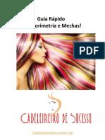E-Book Guia Rápido de Colorimetria e Mechas