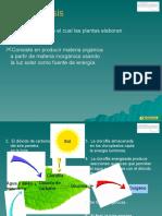 NUTRICIÓN DE LAS PLANTAS.pptx