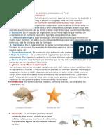 clase virtual la animales lectura 2