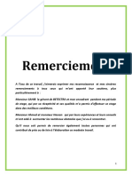 3rapport de stage  remerciement  introduction conclusion.doc