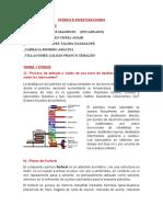 TAREAS Y INVESTIGACION GRUPO VALIENTES.docx