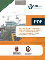 _6_implementacion_y_auditoria_de_sistemas_integrados_de_gestion_calidad_iso_9001.pdf