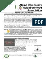ACNA January 2011 Newsletter