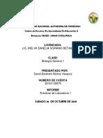 PRACTICAS DE LABORATORIO (1)
