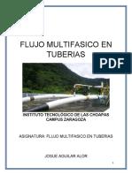 INSTITUTO TECNOLÓGICO DE LAS CHOAPAS.docx