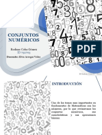 Conjuntos numericos - Rodisac Coba
