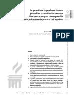 garantias medios de prueba.pdf
