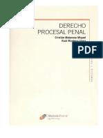 Maturana_Miquel_Cristian_y_Montero_Lopez__Derecho_Procesal_Penal_Tomo_1 2.pdf