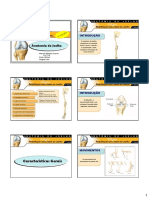 Aula-de-Anatomia- pdf FRANCERE.pdf
