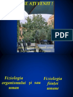 N F Z Curs introductiv.pdf