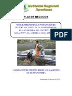 PLAN DE NEOGOCIO TRUCHA