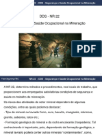 DDS_NR22_mineracao.pdf