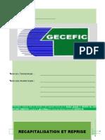 PLAN D'AFFAIRES-GECEFIC II