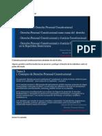 1er modulo - Derecho Procesal Constitucional.docx