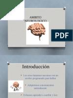 AMBITO.pptx