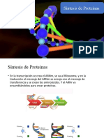 sintesis de proteinas EXPO