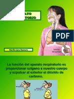 DIAPOSITIVAS EL APARATO RESPIRATORIO HUMANO.pdf