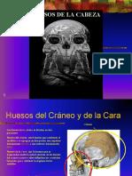 huesos del craneo y cara.ppt