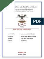 GUIA DE LABORATORIO RX LATERAL DE CRANEO.docx