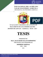 Callata_Barrantes_Julio_Cesar.pdf