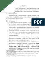 PRUEBA (materia penal)