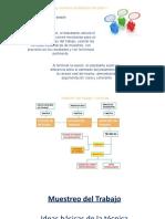 PPT Muestreo - 1 DE 2 (1)