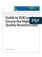 Guide to B2B Leads