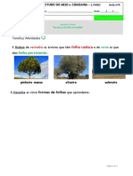 EEC EM CID AULA 4 PLANTAS HANSEL GRETEL 1ANO