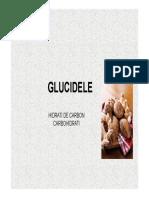 5 P.N.U. GLUCIDELE.pdf